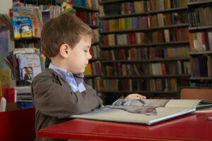 Методика обучения чтению лирических стихотворений на уроках литературного чтения в начальных классах